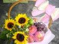 FF 12 Flower & Fruits